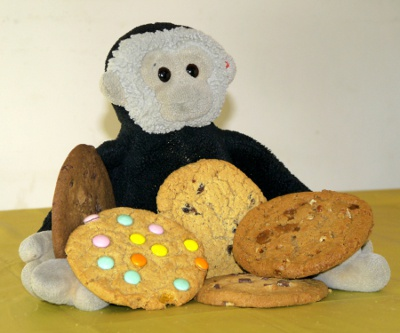 Mooch's Cookie Policy - Mooch monkey with cookies
