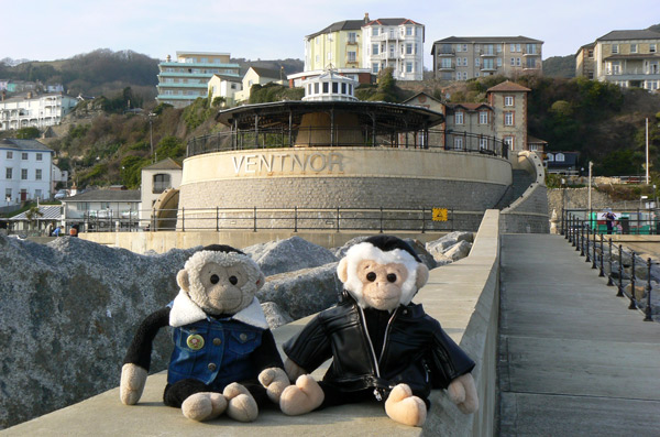 Mooch and Monty monkeys at Ventnor, Isle of Wight.