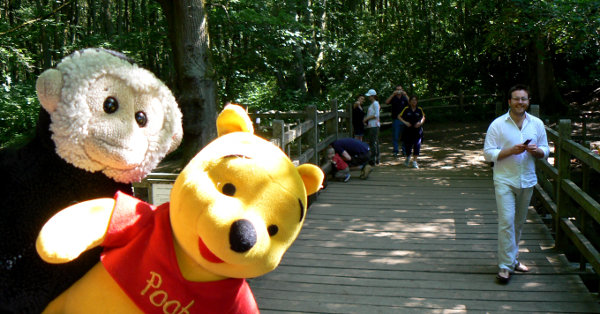 Mooch monkey and Winnie-the-Pooh at Pooh Bridge.
