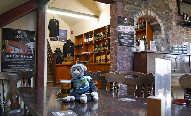Mooch monkey has a beer at the York Brewery